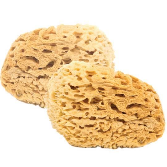Mořská mycí houba pro děti