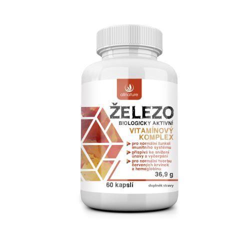 Železo - vitamínový komplex 60 kapslí
