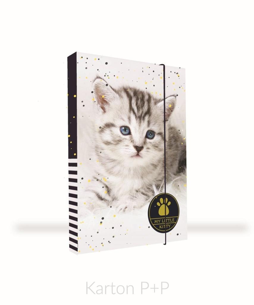 Box na sešity A4 kočka